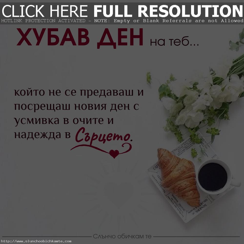 Хубав ден на теб, който не се предаваш - пожелания за добро утро, добро утро и усмихнат ден, добро утро и слънчев ден, добро утро, добро утро кафе, добро утро сърце, добро утро цветя, хубав ден, добро утро на теб, пожелания за хубав ден, картинки за добро утро, усмивка в очите, надежда в сърцето, позитивни мисли, позитивно добро утро, виртуално приятелство, виртуално добро утро, добро утро приятели, пожелания за добро утро и хубав ден