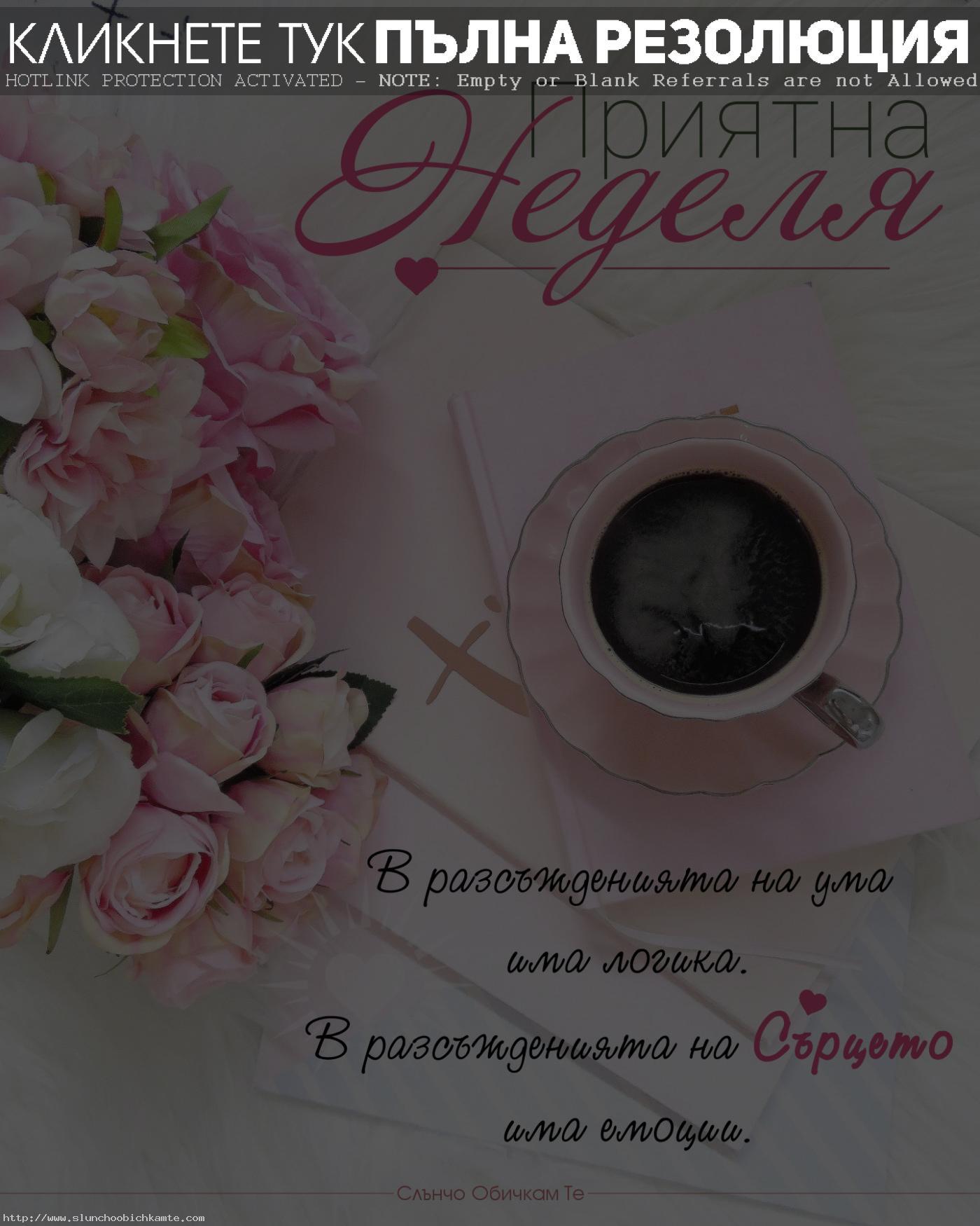 Приятна неделя - В разсъжденията на ума има логика, в разсъжденията на сърцето има емоции - неделя, пожелания за уикенд, пожелания за неделя, хубава неделя, слънчева неделя, усмихната неделя, слънчев уикенд, приятен уикенд, хубав уикенд, емоции, любов, добро утро, кафе, цветя