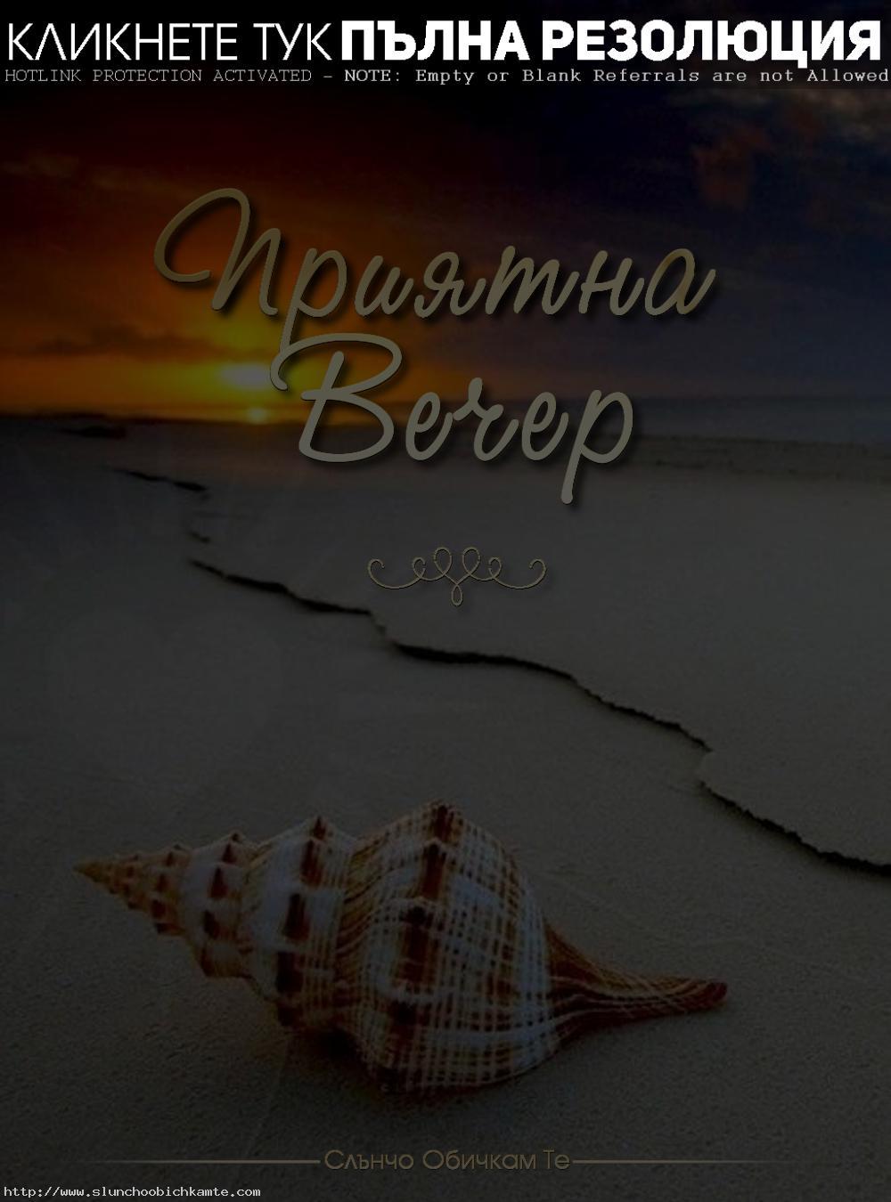 приятна вечер и щастливи мигове, плаж, море, ръпан, мида, пясък, залез, пожелания за вечер, приятни мигове, щастлива вечер, пълна с емоции