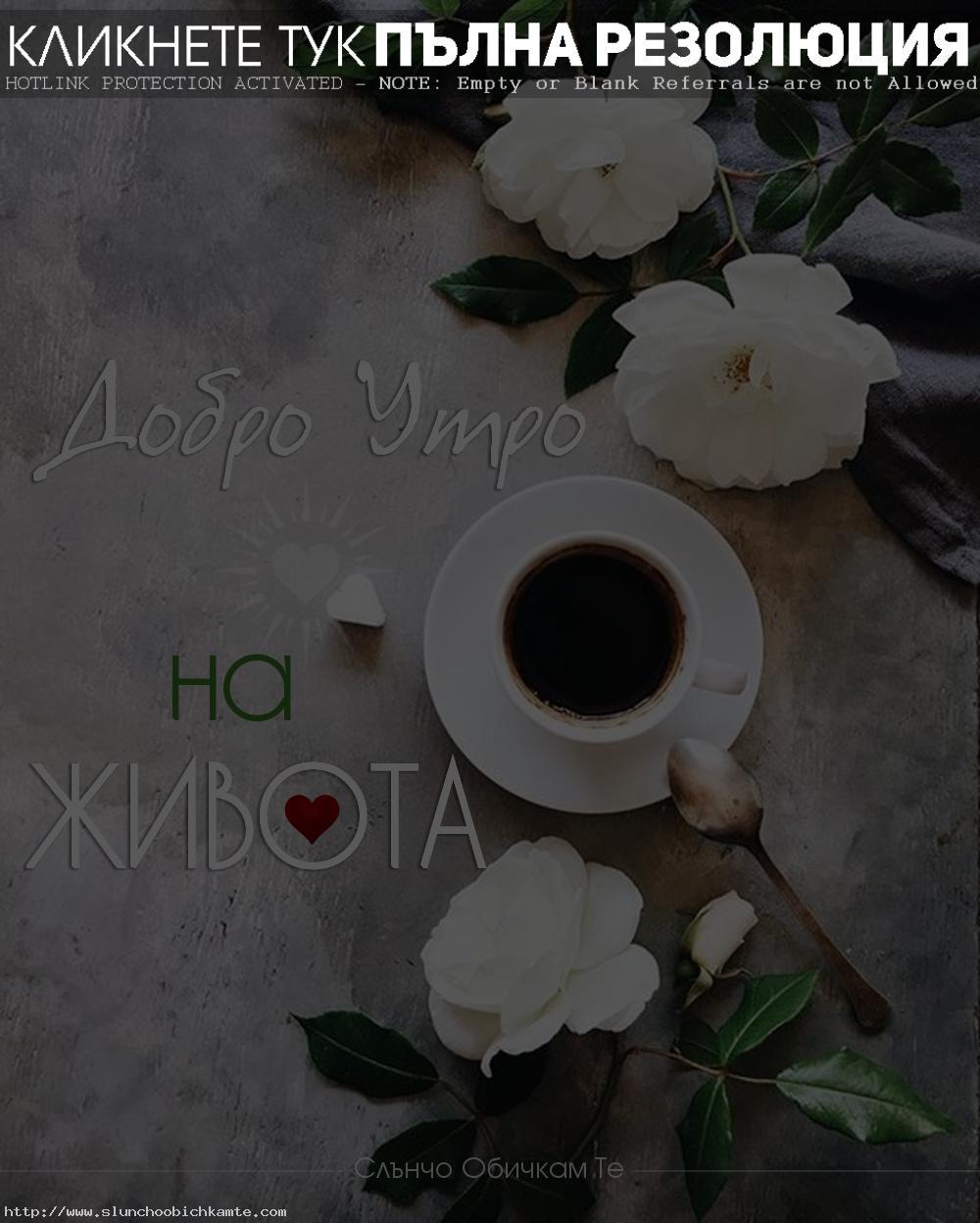 Добро утро на живота! Добро утро на теб! Пожелания за добро утро, хубав ден, усмихнат ден, позитивен ден, слънчев ден