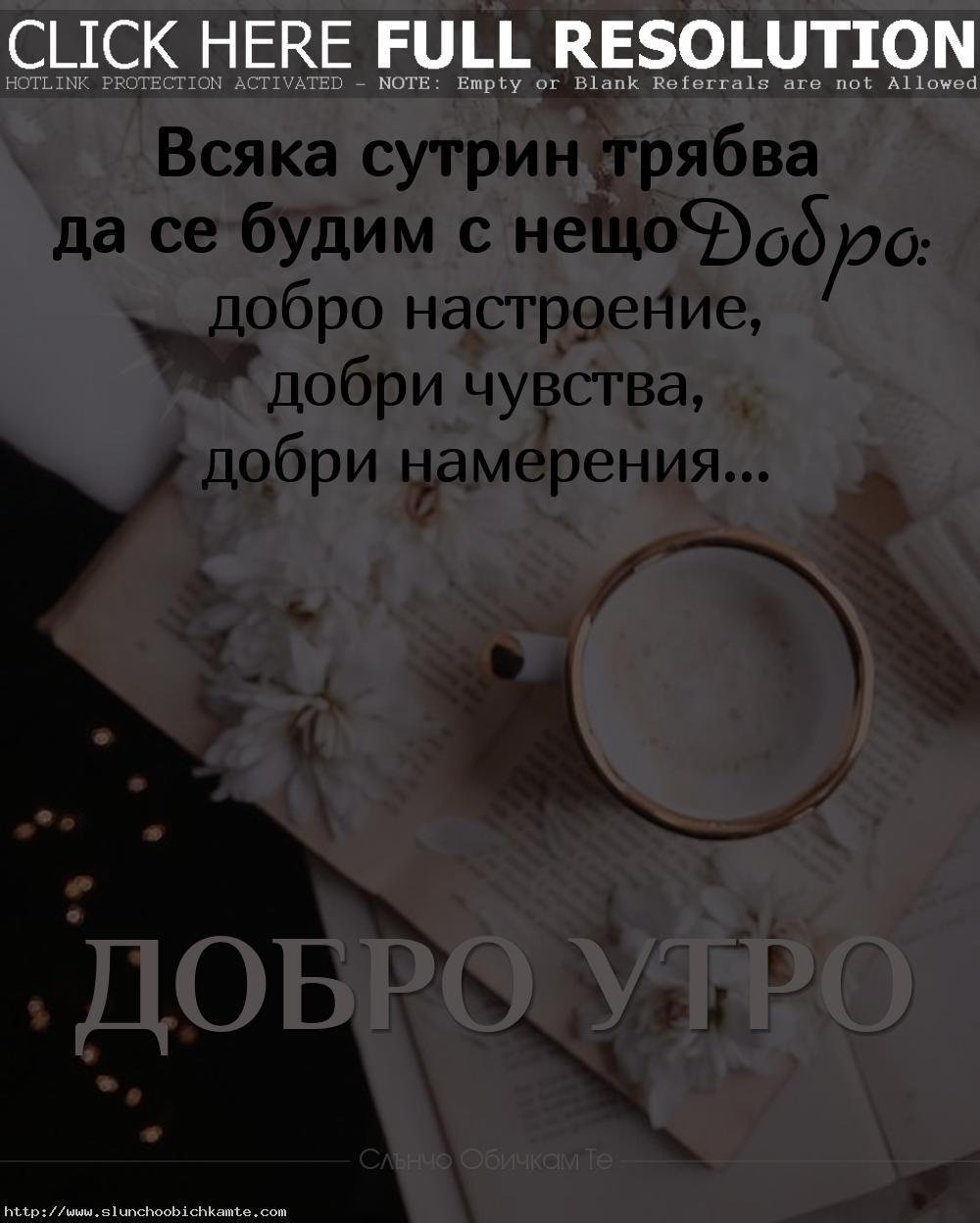 Добро утро. Всяка сутрин трябва да се будим с нещо добро - Добро настроение, добри чувства, добри намерения. Пожелания за добро утро, кафе