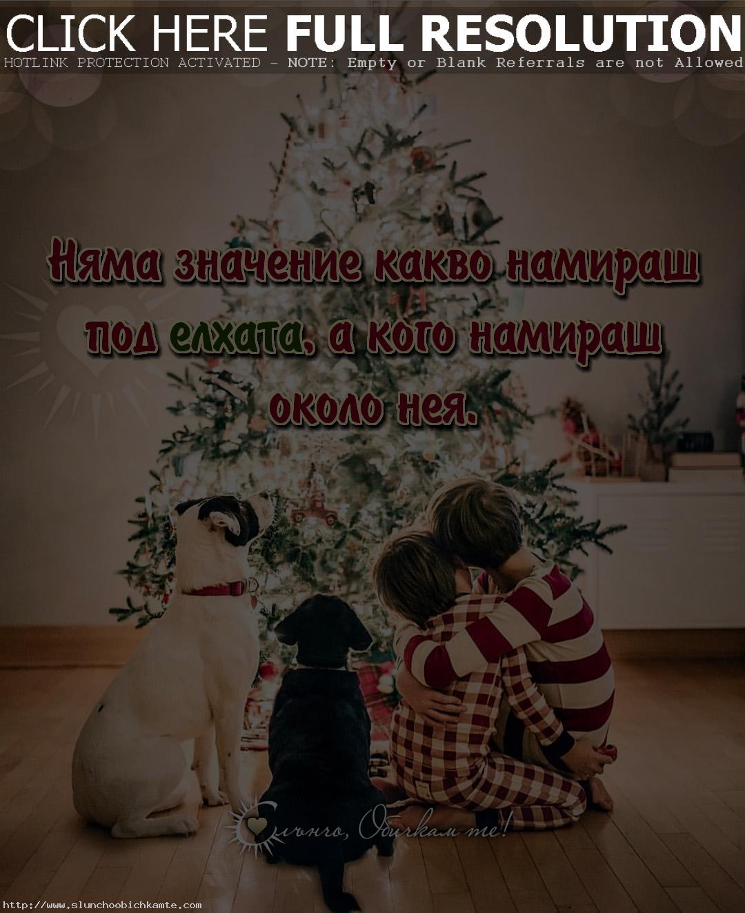 Няма значение какво намираш под елхата а кого намираш около нея - Коледа 2019, коледна елха, коледно настроение, коледа семейство, коледни статуси, коледни мисли, коледни фрази, коледни цитати, коледа елха, коледа любов, коледа слънчо