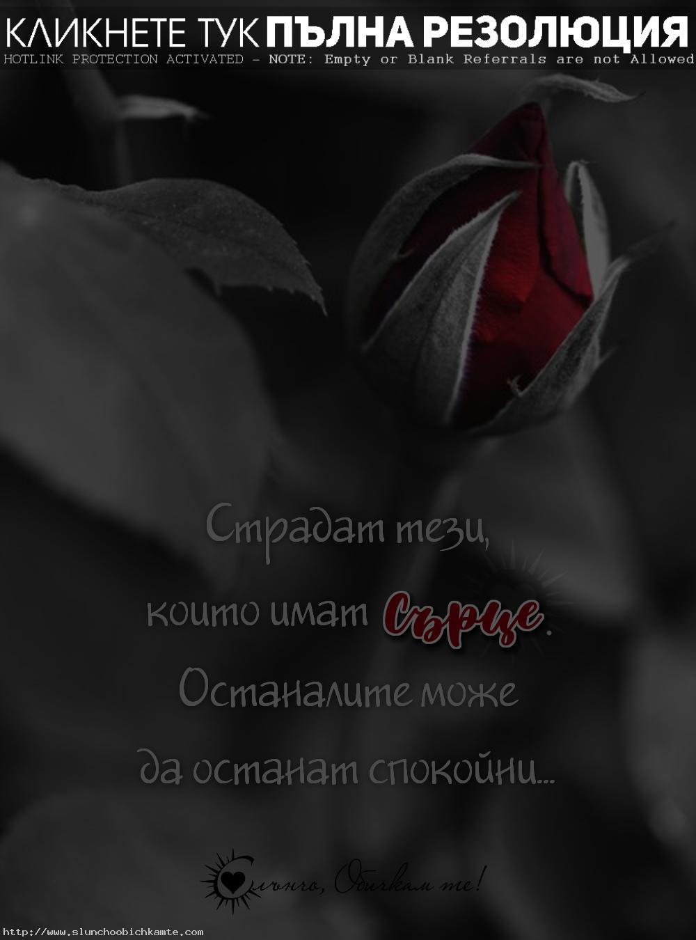 Страдат тези, които имат сърце. Останалите може да останат спокойни. - Любов, любовни мисли, любовни фрази, любовни цитати, за любовта, любовни статуси, сърце, страдание, страдащо сърце