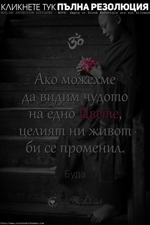 Ако можехме да видим чудото на едно цвете, целият ни живот би се променил - Намасте, мъдри мисли, Буда, цитати за живота, Namastè, Buddha, позитивни мисли