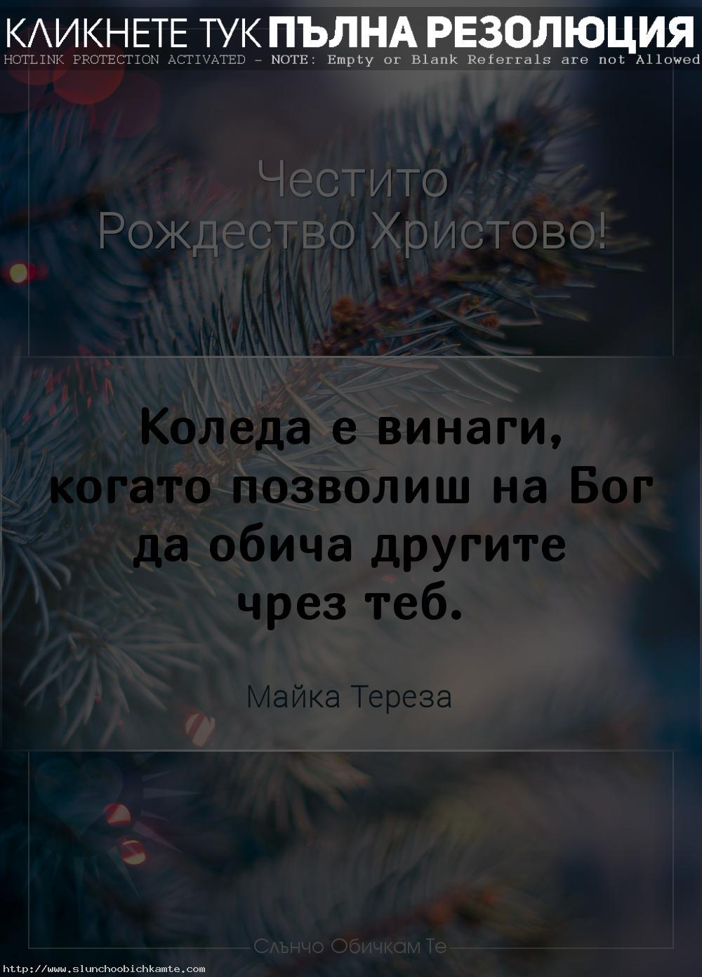 Коледа е винаги, когато позволиш на Бог да обича другите чрез теб - Рождество Христово 2020, Коледни картички и пожелания, цитати на Майка Тереза